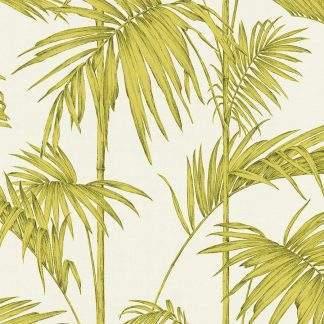 Tapet frunze palmier verzi pe fond alb